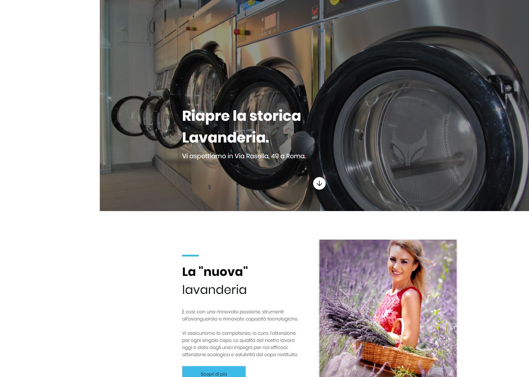 screencapture-targetlaundry